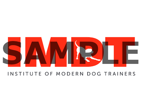 Qualified dog trainer accredited by the Institute of Modern Dog Trainers
